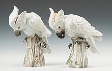 Pair of Meissen Cockatoos