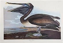 John James Audubon (1785-1851),