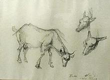 László Holló (Hungarian, 1887 - 1976): Cow (study drawings)