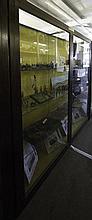 A 20TH CENTURY OAK GLAZED UPRIGHT TWO DOOR MUSEUM