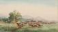 Emile HENRY (1842-1920)  Course de chevaux à l'hippodrome de Borély.  Aquarelle. Signée en bas à droite.  27 x 46 cm.