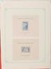 coLonies Françaises :  blocs exposition internationale 1937,  neufs charnières sur feuilles d'albums,  22 pièces.