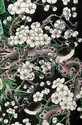 Paire de grands vases en porcelaine de la famille noire Chine, XIXème siècle. De forme quadrangulaire, chaque face décorée de prunus en fleurs sur lesquels sont perchés des oiseaux, le col légèrement évasé reprenant le même décor, épaulement orné de
