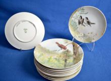 (10) HANDPAINTED PLATES OF BIRDS FROM HAWAII - Condition: Age appropriate wear; All items sold as is.