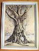 Robert Emerson Curtis drawing of Moreton Bay fig