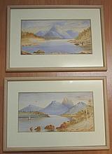 Fowler (New Zealand), 2 antique watercolours