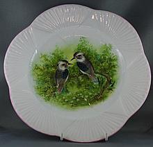 Shelley kookaburra cabinet plate 27cm wide