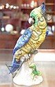 Antique Sitzendorf figure of parrot -height  18 cm