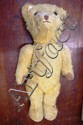 Antique teddy 48cm high