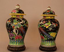 Pair of Chinese porcelain vases in Familie Noir ma
