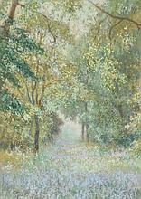 Marks (Claude, active 1899-1915). Bluebell Woods, watercolour and pastel on pape