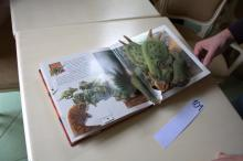 Dinosaurs Babies. Pop-up book