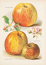 Wright (John) - The Fruit Grower's Guide,