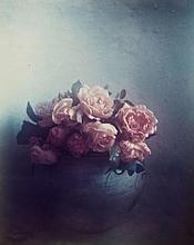 ARR David Hamilton (b.1933). Roses, St Tropez, 1980. Chromogenic print on Kodak paper, signed, titl