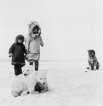 ARR Jean-Philippe Charbonnier (1921-2004). Un Chien + Deux Oursons, Wainwright, Alaska, 1955. Gelat