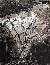 John Blakemore (b.1936) - Afon Gamlan, Wales, 1975