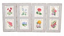 A set of sixteen coloured lithographs of flowers, after J