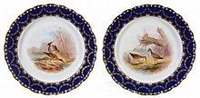 A pair of Royal Worcester dessert plates printed and painted with snipe