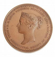 Royal Agricultural Society, 50th Anniversary 1889, bronze medal by W. & L. C