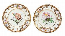 A pair of Coalport porcelain botanical plates, mid 19th century