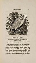 Bewick (Thomas) - History of British Birds,