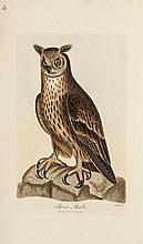 Graves (George) - British Ornithology: