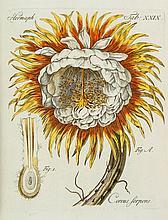 Gleichen (Wilhelm Friedrich von) - Auserlesene mikroskopische Entdeckungen bey den Pflanzen, Blumen und Bluethen, Insekten...,