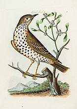 Bolton (James) - Harmonia Ruralis; or, An Essay towards a Natural History of British Song Birds,