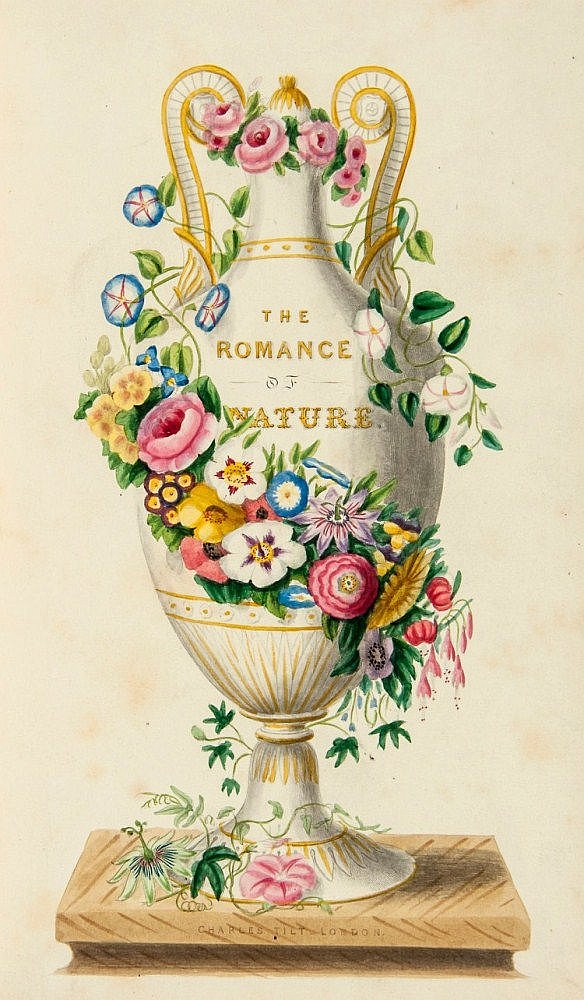 Meredith (Louisa Anne Twamley) - The Romance of Nature; or, The Flower-Seasons Illustrated,