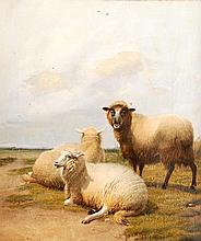 Thomas Sidney Cooper (1803-1902), Three sheep in a