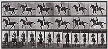 Eadweard Muybridge (1830-1904). Horse Cantering