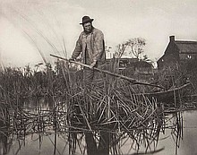 Peter Henry Emerson (1856-1936). Cutting the