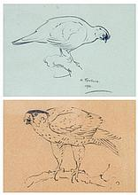 Archibald Thorburn (1860-1935) - Study of a grouse; Study of a falcon,