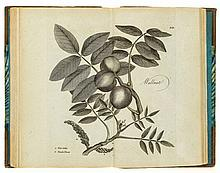 [Aikin (John)] - The Woodland Companion: or a brief description of British Trees,