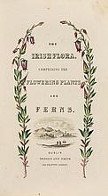 [Baily (K.S.)] - The Irish Flora,