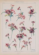 Habert-Dys (Jules Auguste) - L'Ornamet Pratique,