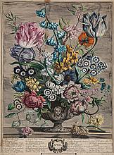 Furber (Robert) - Twelve Months of Flowers: February, April, May and June,