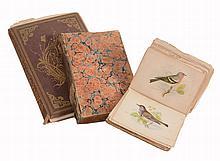 Three various volumes of Natural History ; H