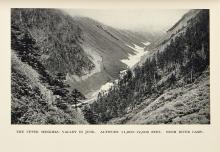 Kingdon Ward -  The Mystery Rivers of Tibet ..., 1923; The Romance of Plant Hunting