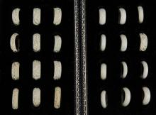 Twenty Four (24) Chinese Antique Ivory Carved Rings