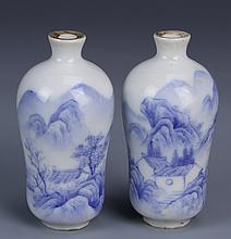 Pair of Chinese Blue and White Snuff Bottles