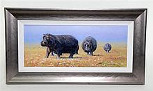 § Pip McGarry - Chobe River Hippos, oil on canvas, signed and dated 2011