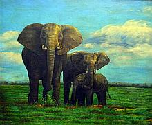 Harold Wood b. 1819 - Elephants; oil on canvas, signed,