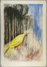 Janine Boyd.  Yellow Bird, Lithograph. Signed in pencil to the margin and mark Curwen Studio. Sheet 87cm x 60cm.