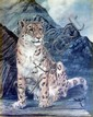 After Seagrove - Snow Leopard, Nepal, colour print, signed in pencil and numbered 12/250