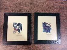 Flower Photos Framed lot of 2