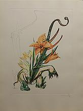 Salvador Dali Florals Lily Elephant Hand Signed #  Authentic