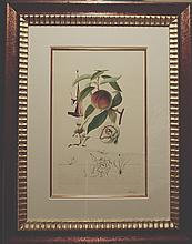 Dali FlorDali/Les Fruits Peach Hand Signed Framed Dali Certified