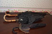 3 early umbrellas