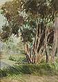 ATTRIBUTED TO FLORA LANDELLS GUM TREES ON THE